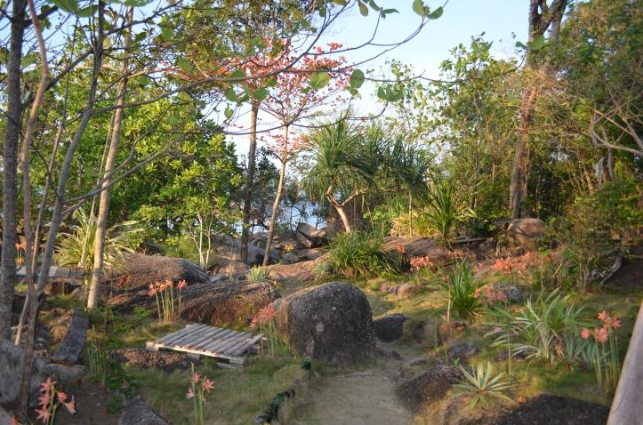 Padang Bunga di Atas Tebing Pantai Trikora